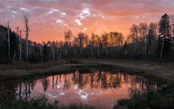 Fond d'écran Étang, arbres, ciel rouge, crépuscule
