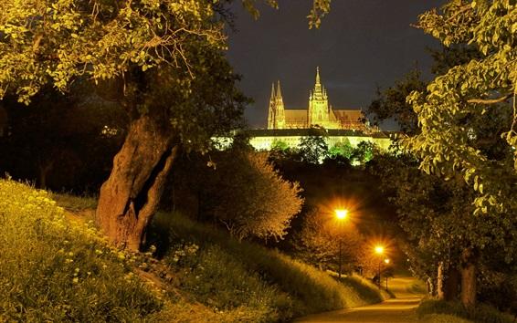 Wallpaper Prague, Czech Republic, road, trees, lights, palace, night