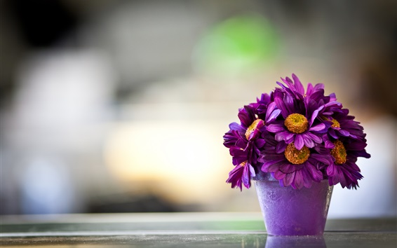Wallpaper Purple flowers, vase