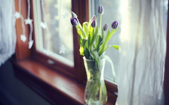 Wallpaper Purple tulips, vase, window