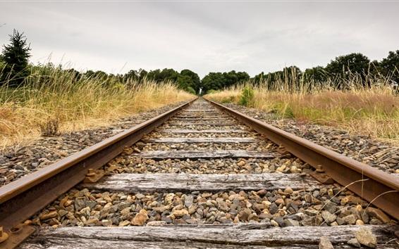 Wallpaper Railroad, grass