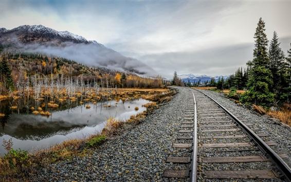 Wallpaper Railroad, stones, lake, trees, fog, autumn