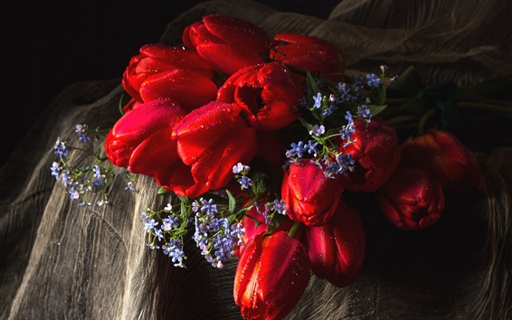 Wallpaper Red tulips, blue flowers Forget-Me-Not