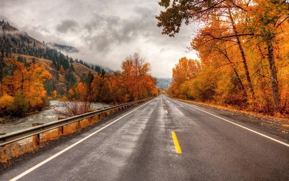 Обои Дорога, деревья, осень