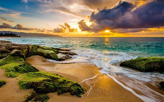 Wallpaper Sea, coast, waves, clouds, sunset, algae, tropics, Hawaii