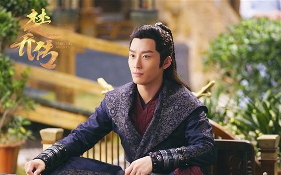 Fondos de pantalla Dou Xiao, agentes de la princesa