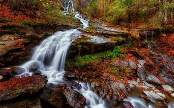 Fond d'écran Pente, cascade, arbres, automne