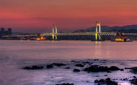 Fond d'écran Corée du Sud, pont, baie, rivière, nuit de la ville, lumières