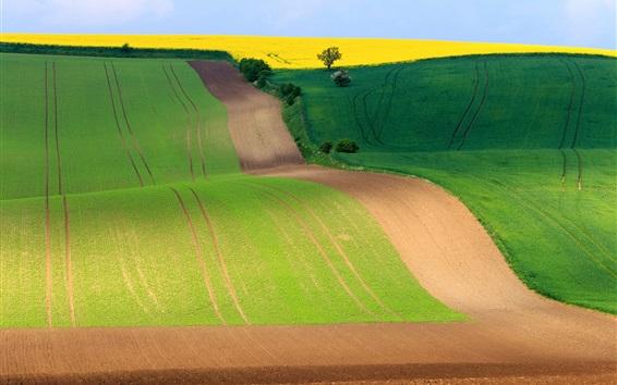 Fond d'écran Région de Moravie du Sud, République Tchèque, magnifiques champs, route