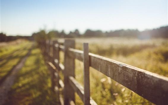 Wallpaper Summer, fence, blurry