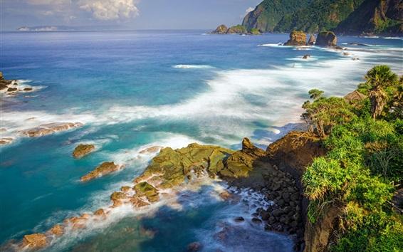 Wallpaper Summer, sea, coast, nature