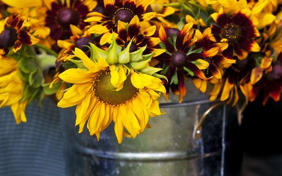 Wallpaper Sunflowers background