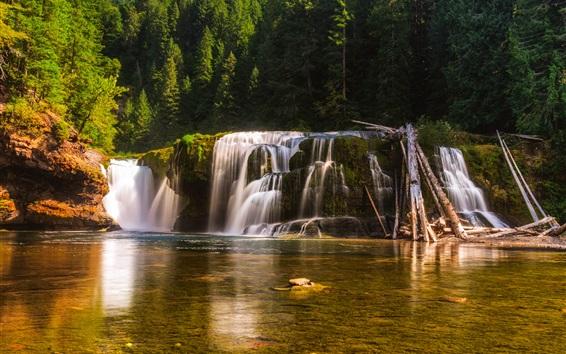Wallpaper USA, Washington, waterfall, water, trees, forest