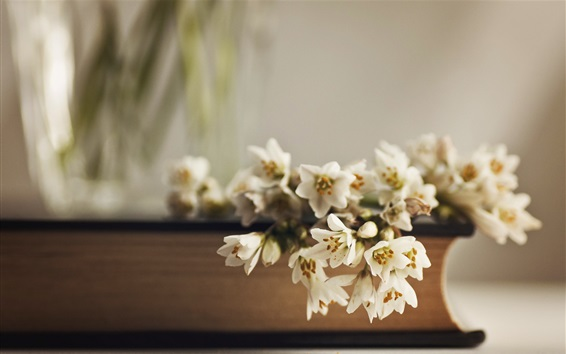 Wallpaper White flowers and book