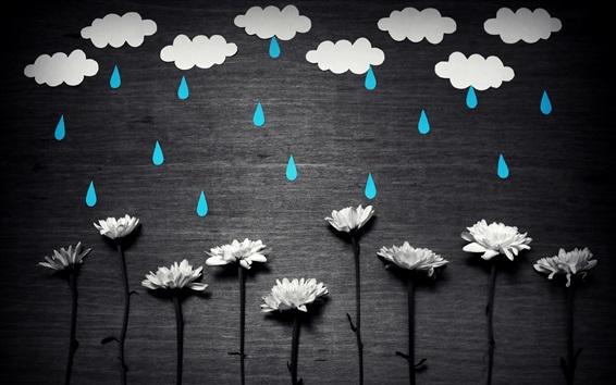 Wallpaper White flowers, blue rain, white clouds, creative picture