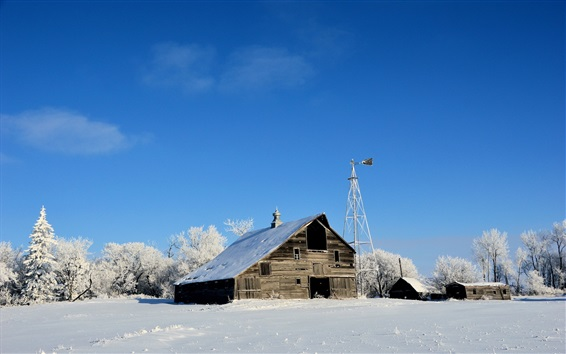 Wallpaper Winter, house, trees, snow, white