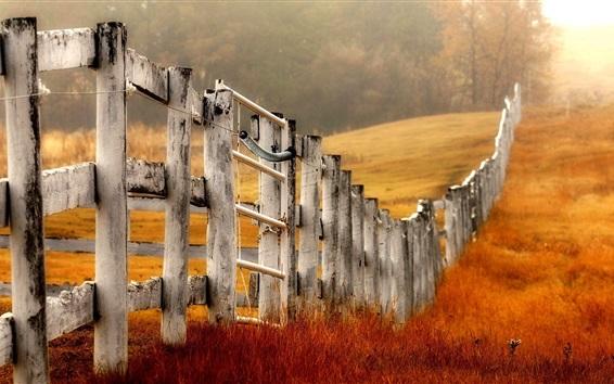 Wallpaper Wood fence, grass, autumn
