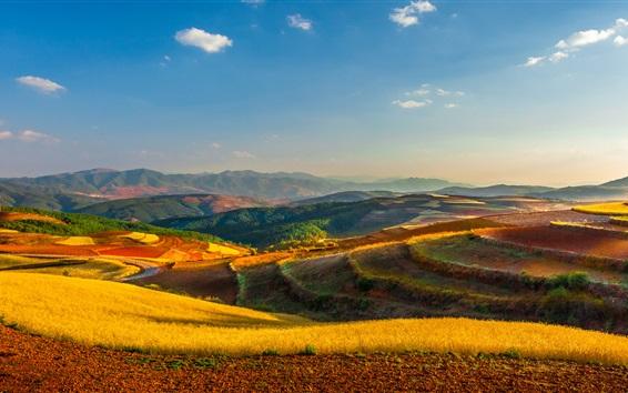 Wallpaper Yunnan, Kunming, China, farm, fields, mountains, road