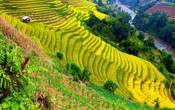 Papéis de Parede Bela paisagem, campos, terraços, montanhas, rio