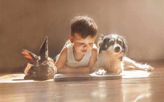 배경 화면 귀여운 아기, 토끼, 개, 친구