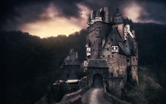 Wallpaper ELTZ castle, Germany, birds, clouds, dusk