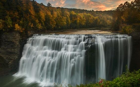 Fondos de pantalla Bosque, árboles, río, cascada, otoño, estados unidos