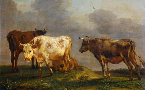 Обои Четыре коровы на лугу, Паулюс Поттер, живопись маслом