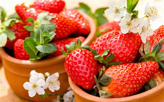 Wallpaper Fresh strawberries, flowers, bowl