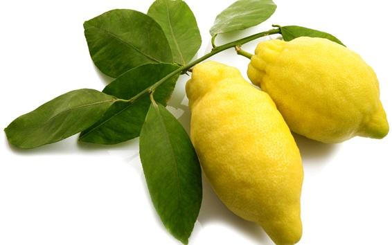 Wallpaper Fresh yellow lemons, white background