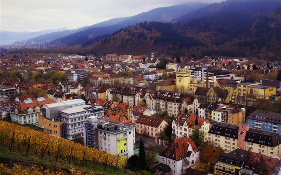 Wallpaper Germany, city, houses, buildings, mountains, top view