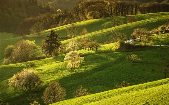 Papéis de Parede Alemanha, cenário da natureza, grama, árvores, colinas, primavera