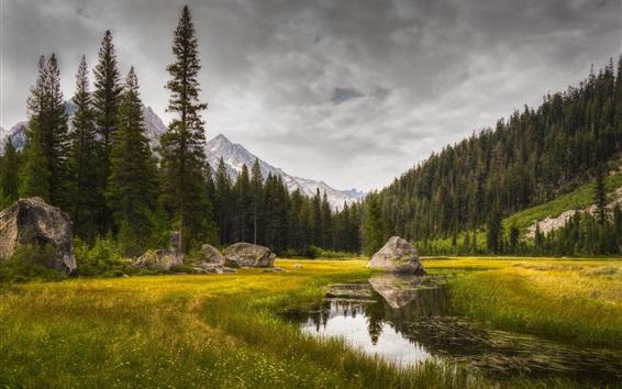 Fond d'écran Herbe, lac, arbres, rochers, montagnes