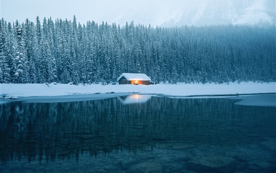Wallpaper House, lake, water, snow, forest, winter
