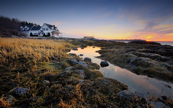 Wallpaper House, villa, coast, grass, dusk