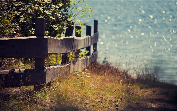 Fond d'écran Lac, clôture, herbe