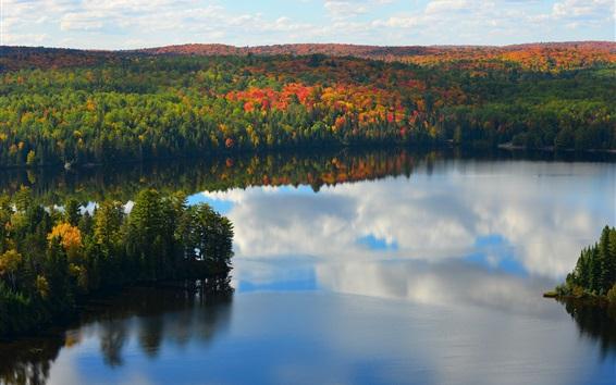Обои Озеро, лес, деревья, осень