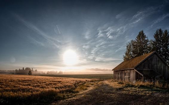 壁紙 朝、フィールド、家、木、太陽