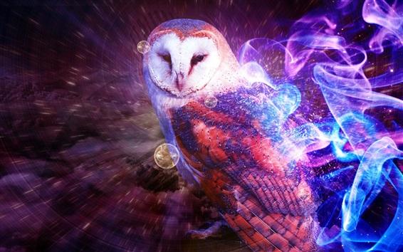 Wallpaper Multicolored owl, smoke, creative design