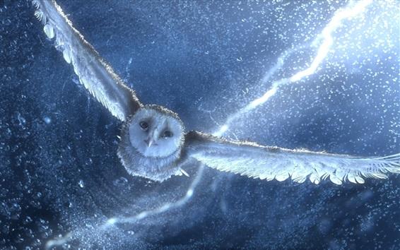 Sétima Frente Owl-flying-water-drops_m