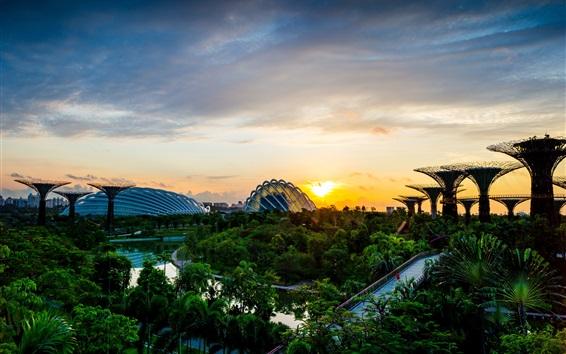 Wallpaper Park, structure, dawn, sunrise, trees, bridge, river, Singapore