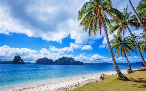 Wallpaper Philippines, tropics, palm trees, sea