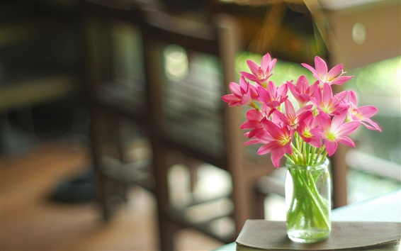 Papéis de Parede Pink orchid, vase, bokeh