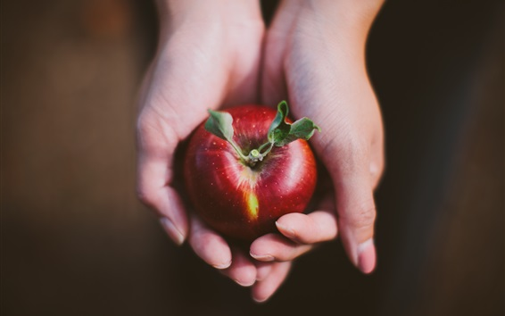 Wallpaper Red apple in hands