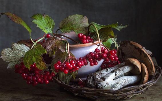 Fond d'écran Nature morte, baies rouges, champignons, boletus