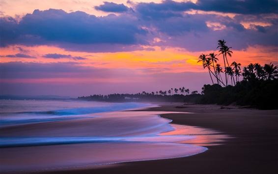 Fond d'écran Coucher de soleil, mer, plage, palmiers, ciel rouge