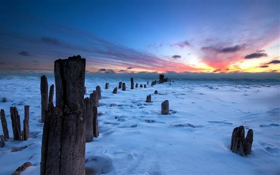 Обои Закат, снег, зима, пень