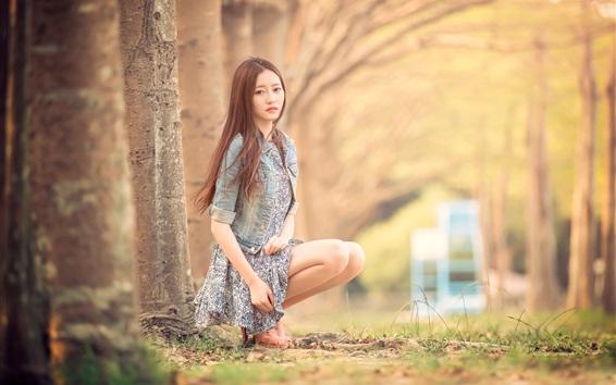Wallpaper Taiwan girl, forest