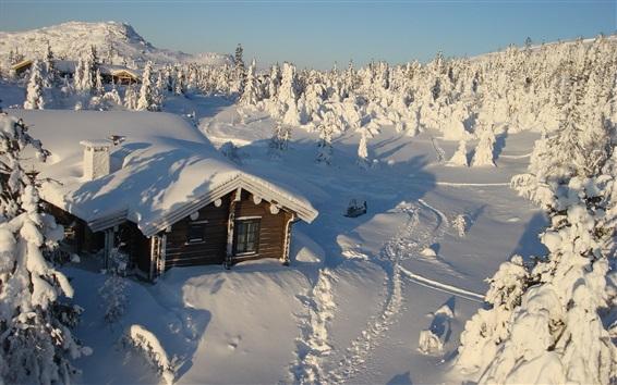 Обои Толстый снег, дом, деревья, зима