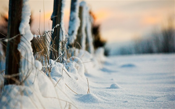 Wallpaper Thick snow, winter, fence