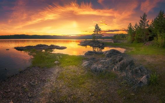 Обои Деревья, озеро, закат, небо